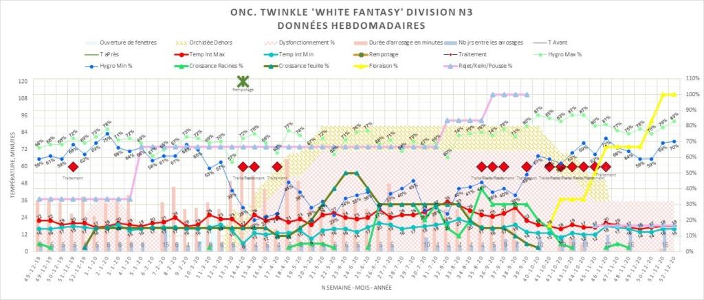 Oncidium Twinkle taches suspectes sur le feuillage 7c950c10