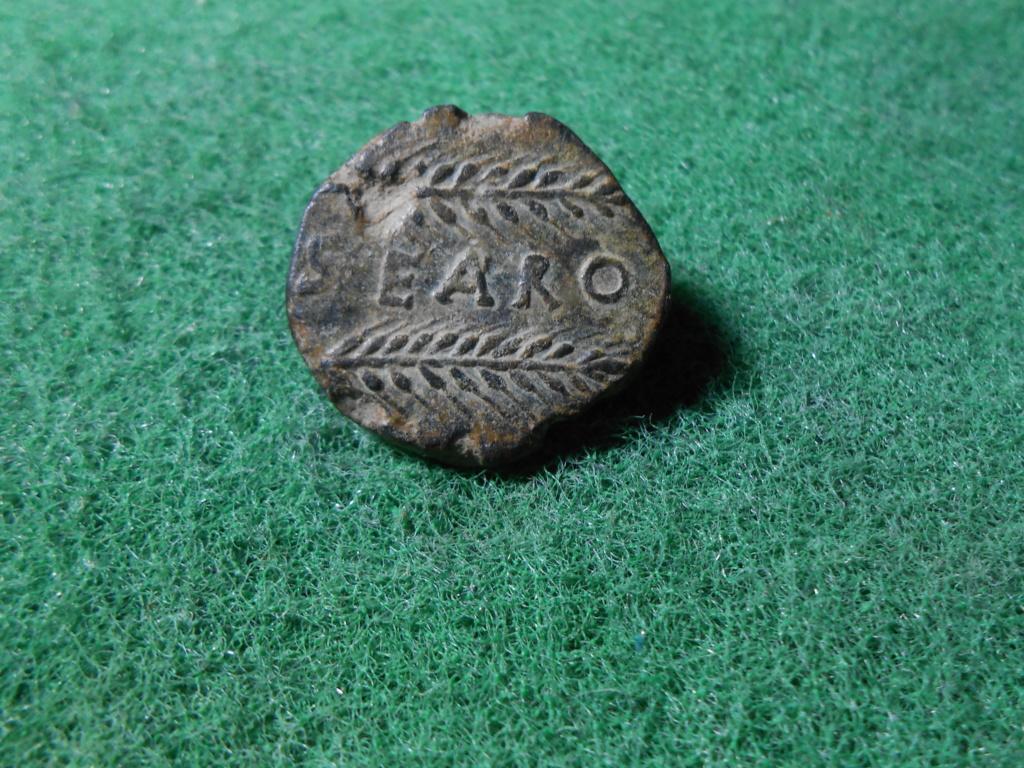 SEARO, 12,3 gr . 25 mm Dscn9026