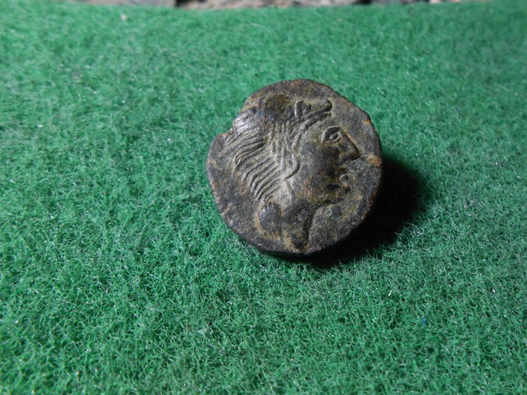 SEARO, 12,3 gr . 25 mm Dscn9027
