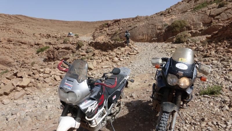 Vos plus belles photos de motos - Page 34 P1000210