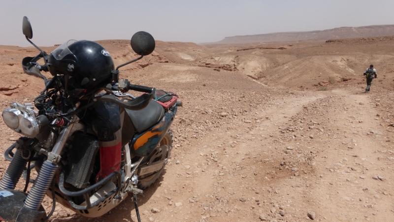 Vos plus belles photos de motos - Page 34 P1000311
