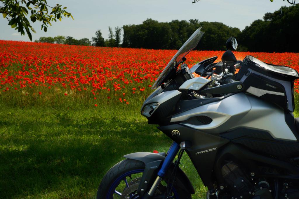 Pour ceux qui aiment la photo, motard ou pas, amateur averti ce topic est pour vous... - Page 6 Ggc04311