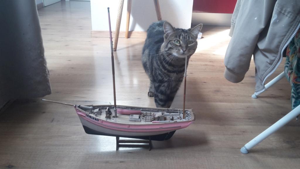 Thonier Marie-Jeanne (Billing Boats 1/50°) par Yoann gui - Page 4 20210304