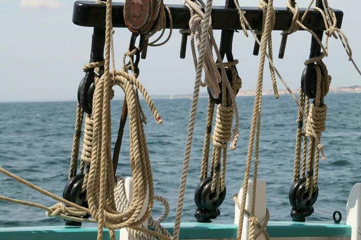 Thonier Marie-Jeanne (Billing Boats 1/50°) par Yoann gui - Page 8 C914c910