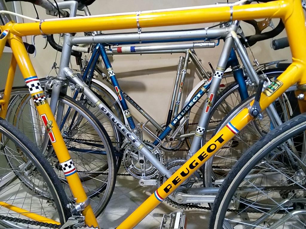 """sortie vintage en vélos PEUGEOT Course """" circuit raymond POULIDOR"""" Mai 2021  Img_2019"""