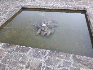 Bassin de 8000L 19383_11