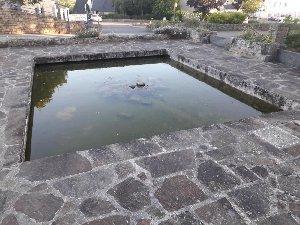 Bassin de 8000L 19383_12