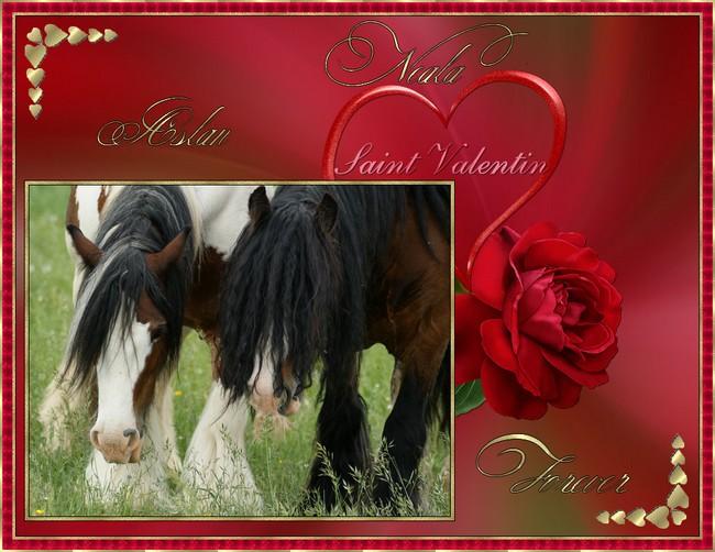 Votez pour le plus beau montage de St Valentin! Valent10