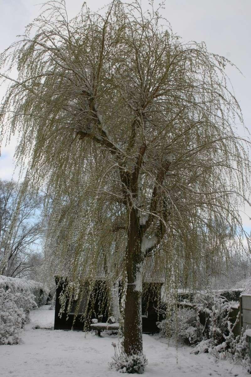 neige au printemps sur Rebecq (ce matin) Maison11