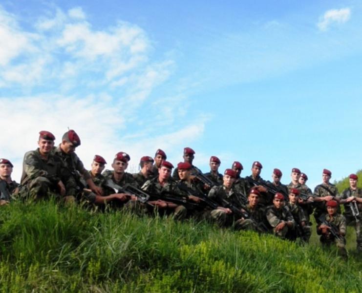 Le 1er RCP en manœuvre 2012_113
