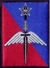 La brigade des forces spéciales terre (BFST) a été créée à Pau le 1er juillet 2002