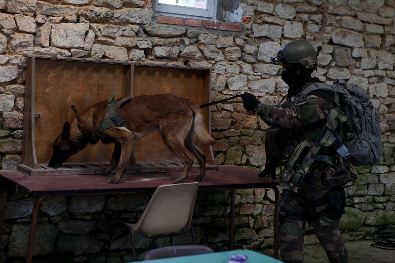 force spéciale française 2011di11
