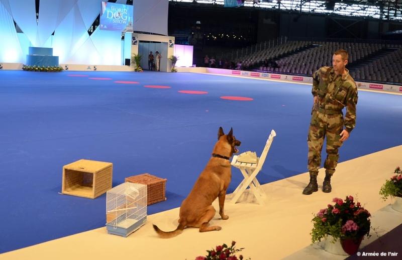 force spéciale française 26_07_10