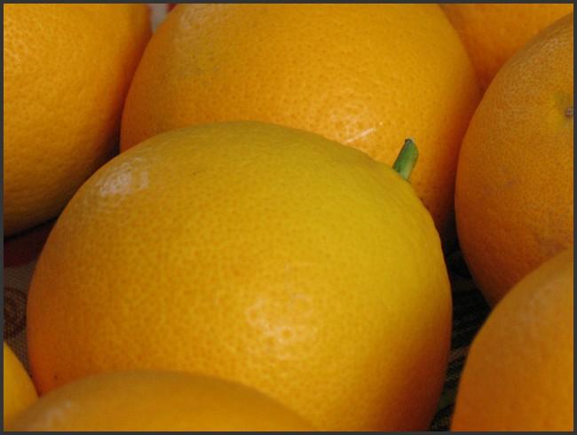 mon panier d'oranges Img_0014