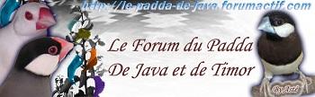 Forum oiseaux exotiques - Portail Logo4512