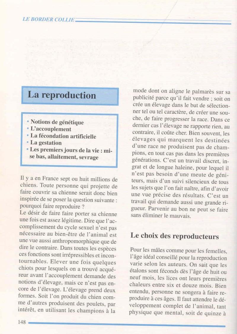 BLANC - croisement merles...? - Page 3 Border10