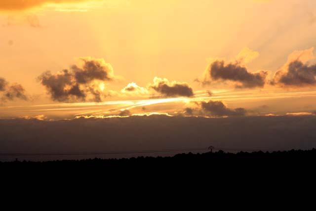 Observation samedi 8 octobre 2011 - spéciale Draconides Img_8110