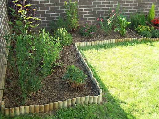 Des nouvelles de mon jardin 100_3524