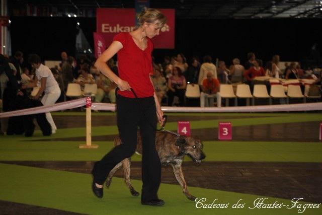 Championat de France 2011 Img_0427