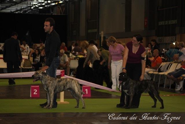 Championat de France 2011 Img_0432