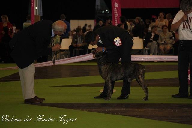 Championat de France 2011 Img_0435