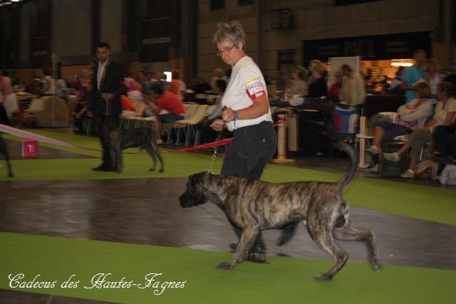 Championat de France 2011 Img_0438