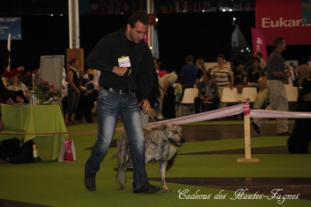 Championat de France 2011 Img_0439