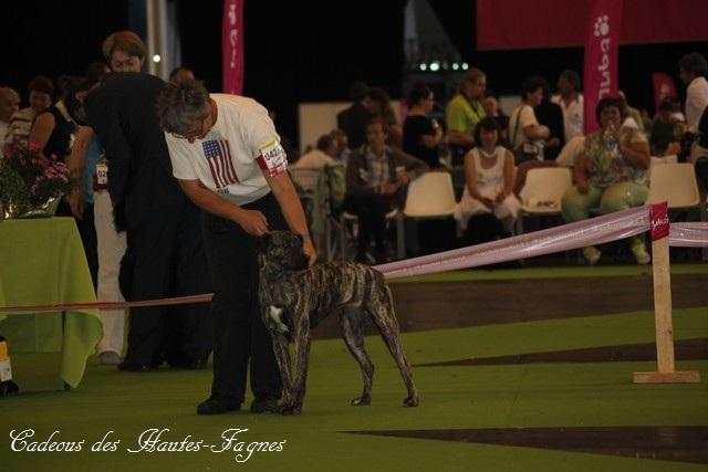 Championat de France 2011 Img_0448