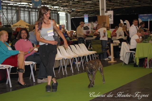 Championat de France 2011 Img_0456