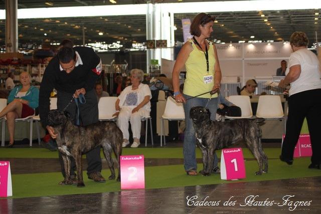 Championat de France 2011 Img_0514