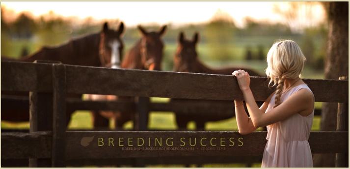 BREEDING SUCCESS • here we go again !