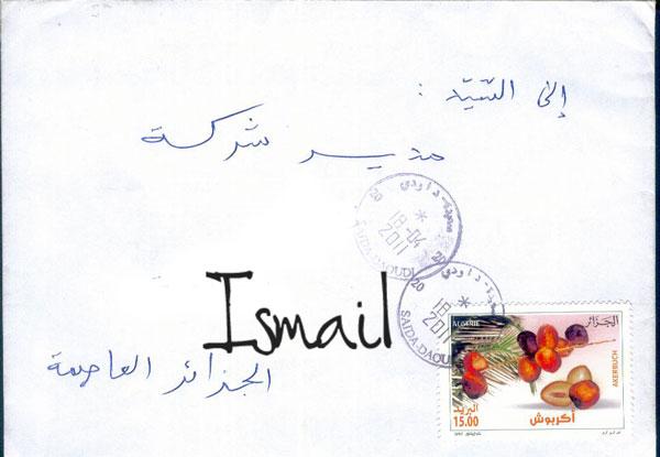 Dattes d'Algérie 327