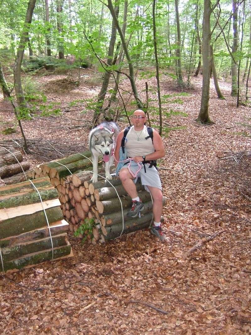 Pique-nique + randonnée en foret de fontainebleau 29/06/2008 - Page 3 Dscf5213