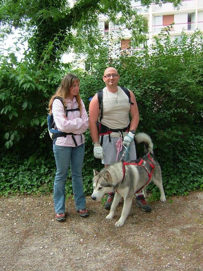 Pique-nique + randonnée en foret de fontainebleau 29/06/2008 - Page 3 Dscf5218