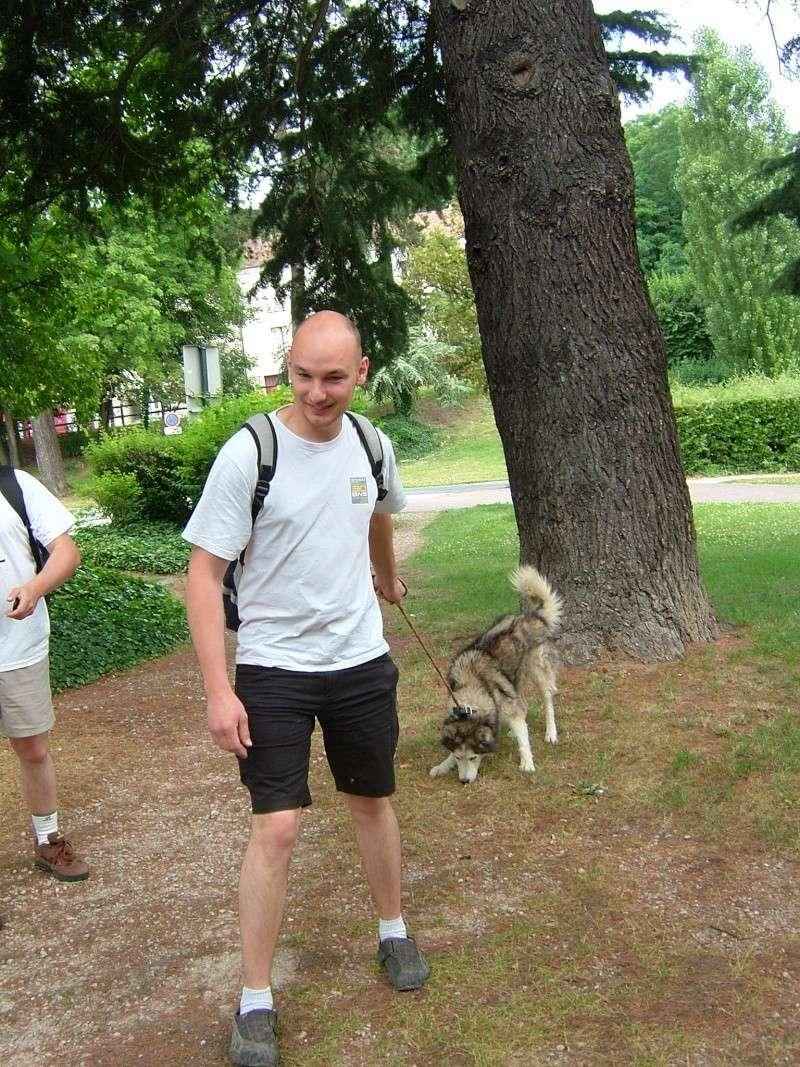 Pique-nique + randonnée en foret de fontainebleau 29/06/2008 - Page 3 Dscf5220