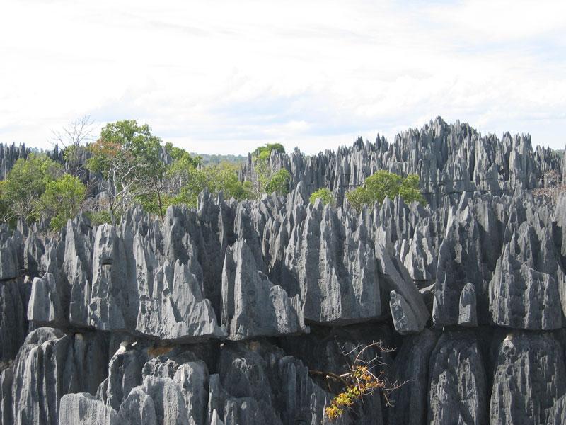 Madagascar Mada0018
