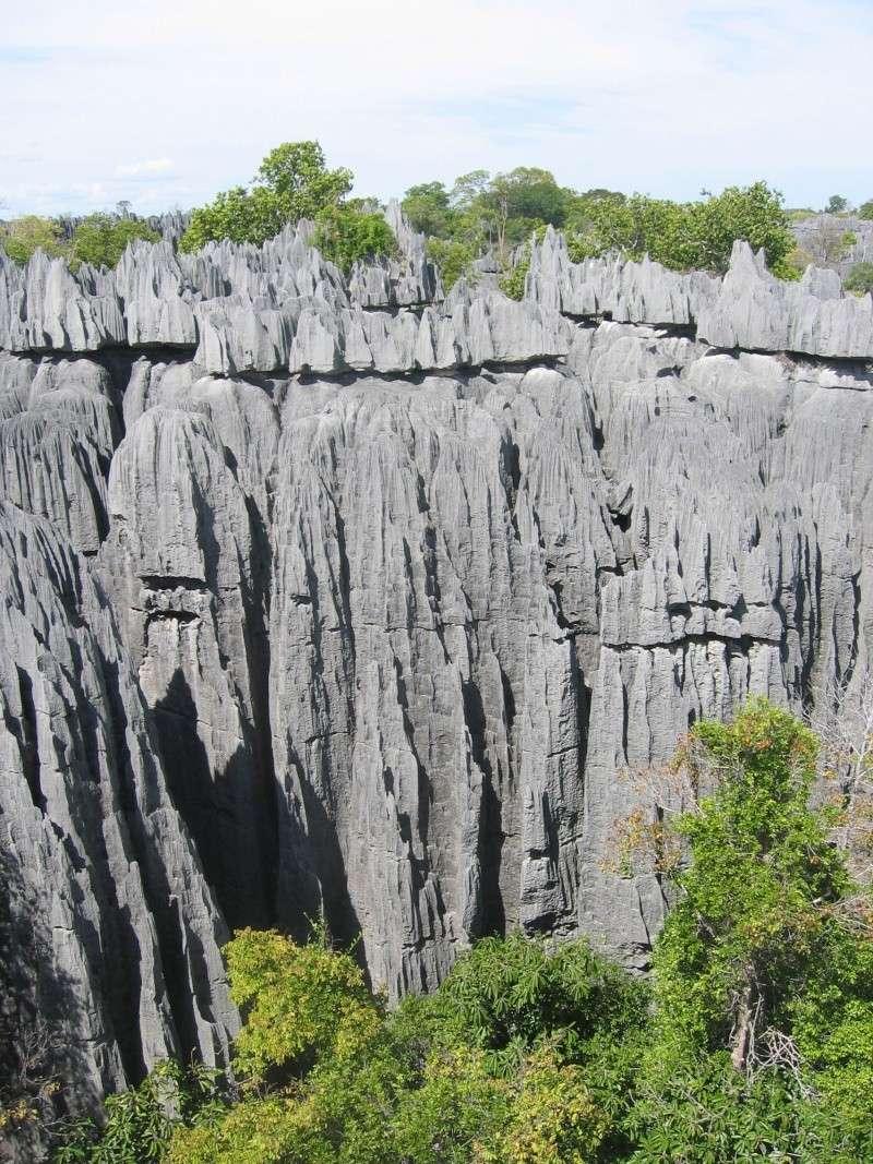 Madagascar Mada0019