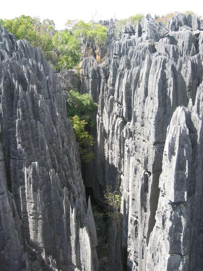 Madagascar Mada0111