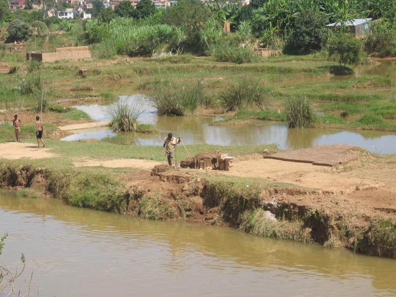 Madagascar Mada0310