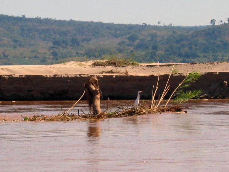 Madagascar Mada1310