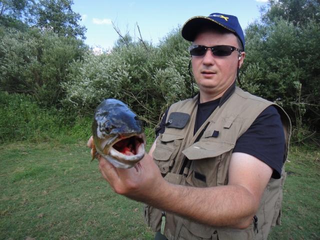 Rencontre avec Le Gaulois Pêcheur - Page 2 Dsc00212