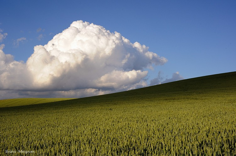 Presqu-orages du 7 juin - belle balade champenoise ! Bourge13