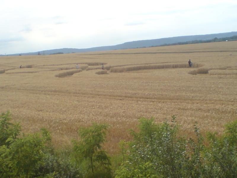 crop circle lorraine Dsc00014