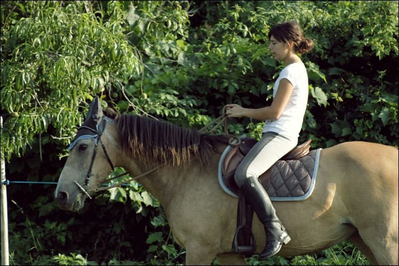 Douune - 20 ans - Dressage Img_4710