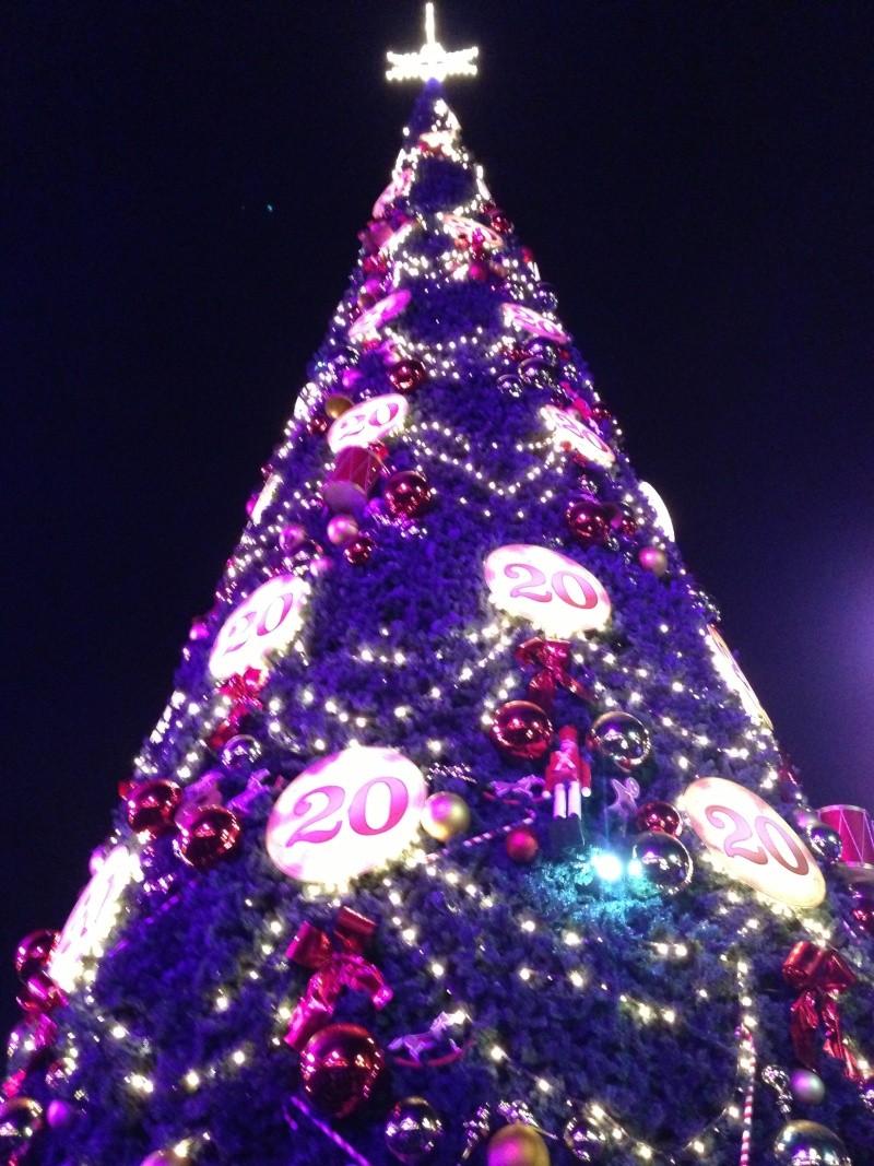 La Cérémonie d'illumination du Sapin de Noël (du 9 novembre 2012 au 6 janvier 2013) - Page 4 Photo_40