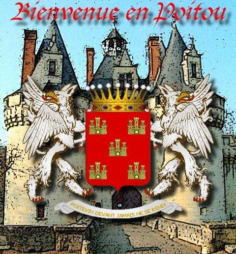 Election du Panneau d'Accueil Chatea10