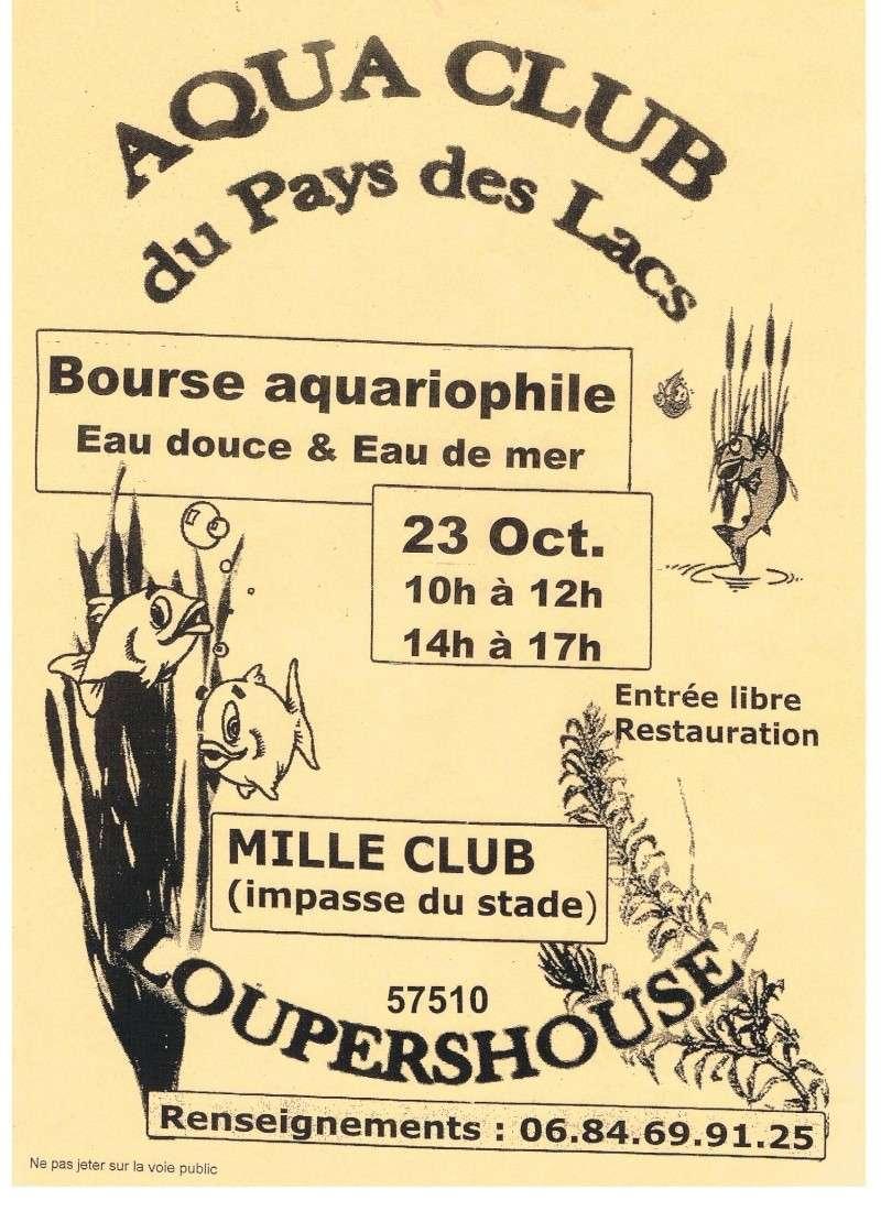 Bourse de l'aquaclub du pays des lacs 23 octobre 2011 00110