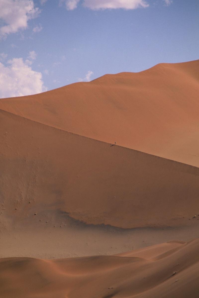 Photographie - Page 8 Namibi10