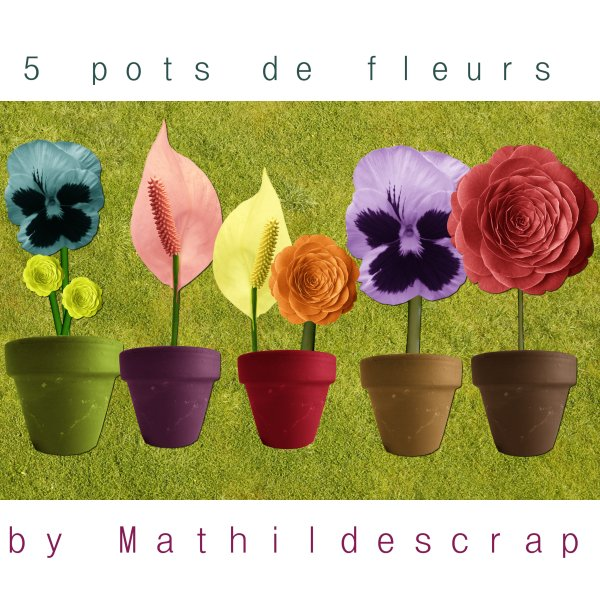 des fleurs en pots et des papillons Previe26