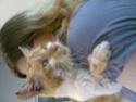 TOULOUZ chat male roux et blanc environ 3 ans double positif (en soins) - Page 2 Photo_31